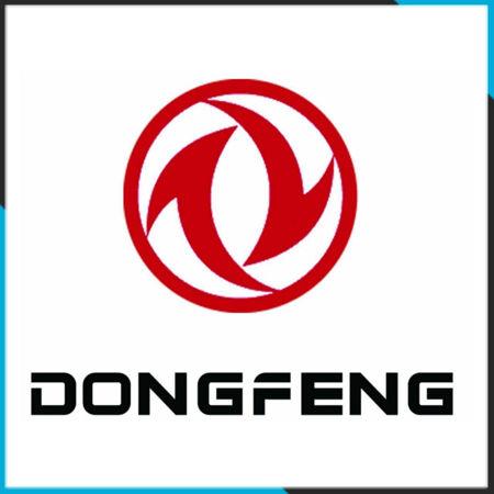 تصویر برای دسته دانگ فنگ